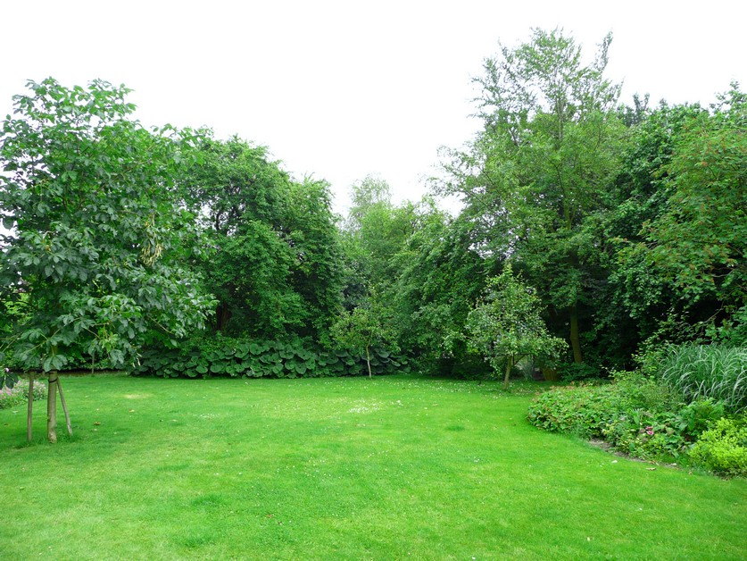 Moderne boerentuin Avenhorn
