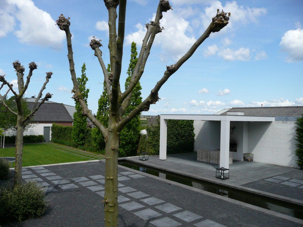 Moderne minimalistische tuin