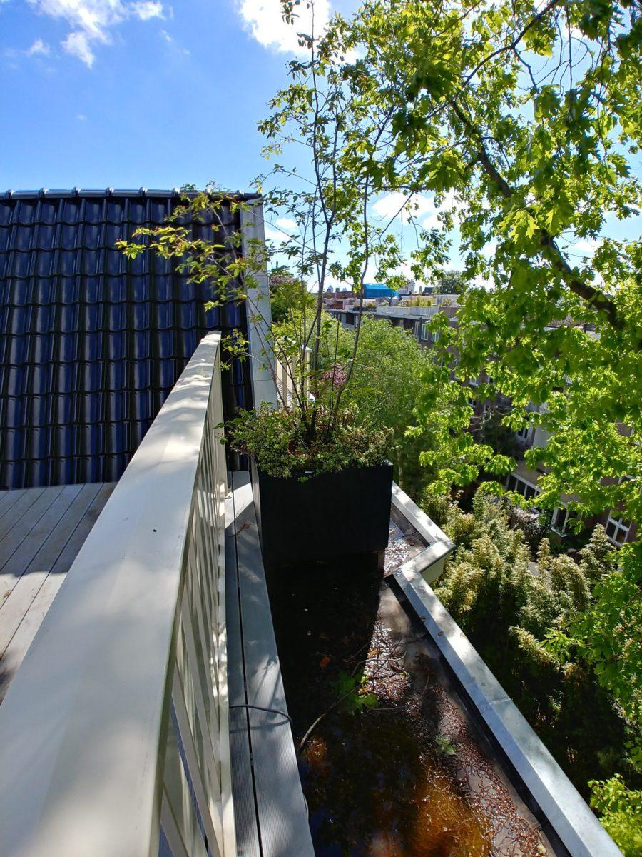 Beschut dakterras door planten